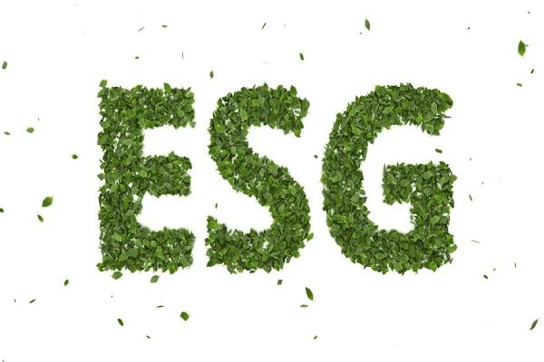 ESG parece, mas não é o mesmo que sustentabilidade